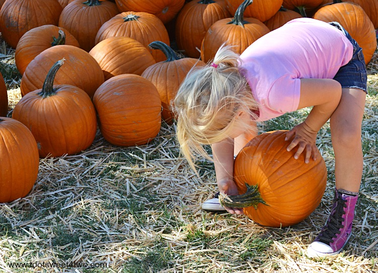 Princess Sweetie Pie grabbing the pumpkin's stem