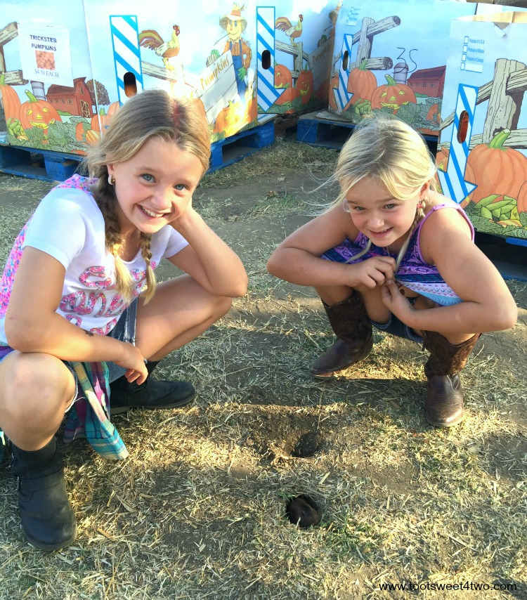 Princesses P excited to see gopher at pumpkin patch