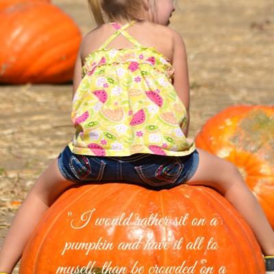 Pumpkin vs Velvet Cushion