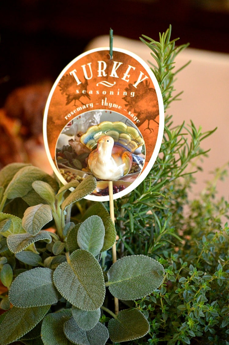 Fresh turkey seasoning herbs in a pot