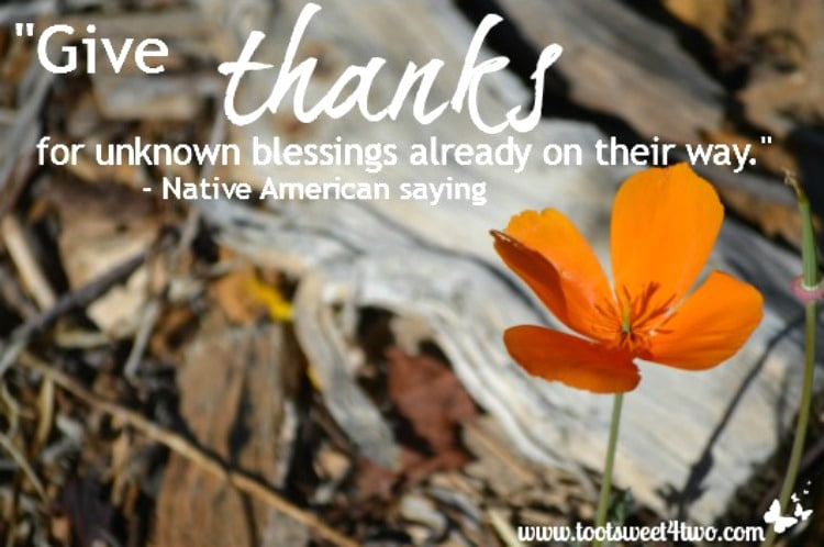 Give Thanks Native American saying quote 750x498