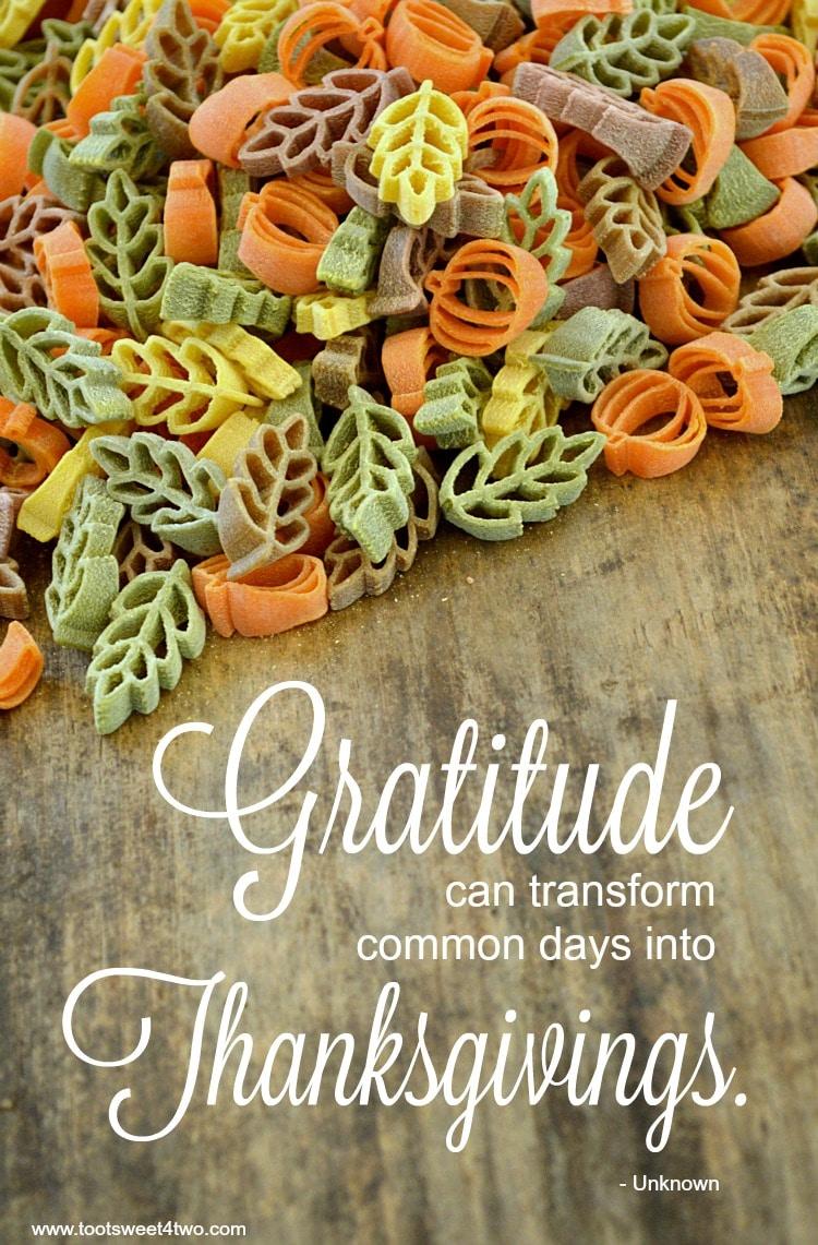 Gratitude quote cover