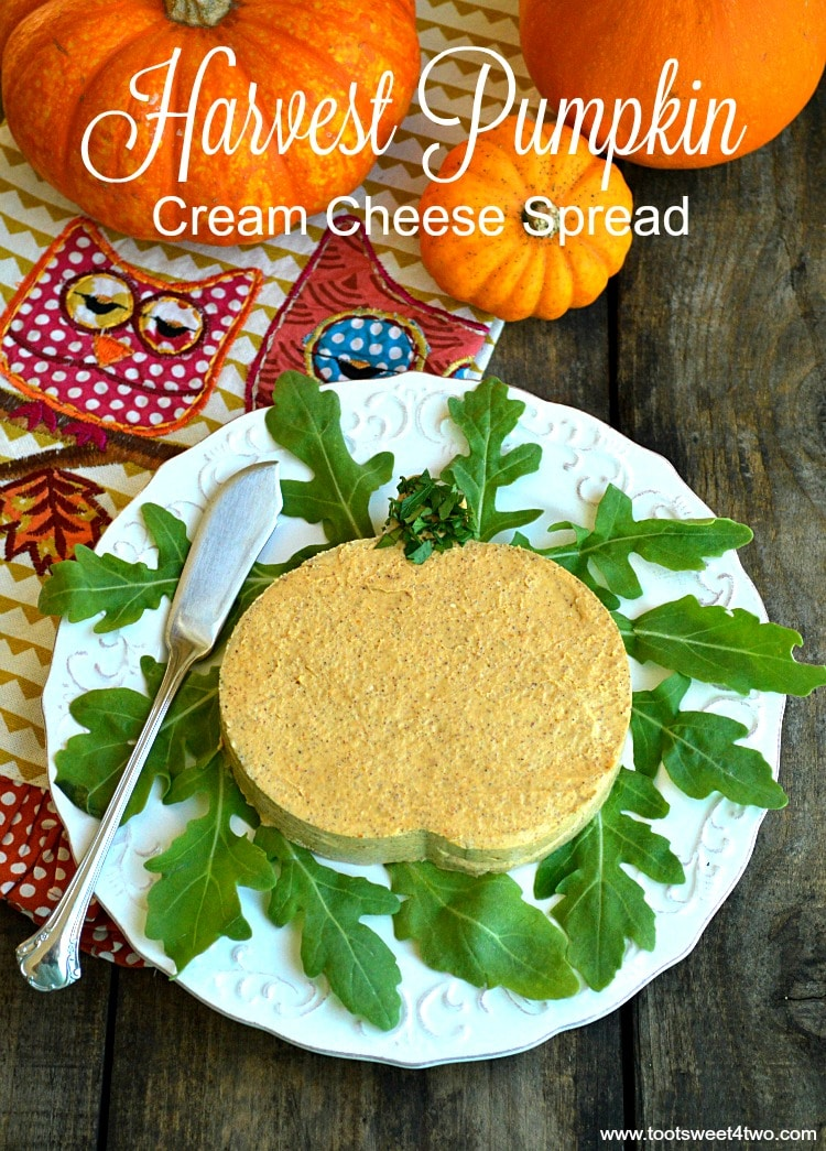 Harvest Pumpkin Cream Cheese Spread - creamy and delicious
