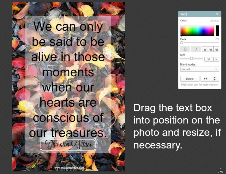 How to place text on photos in PicMonkey instructions - 10