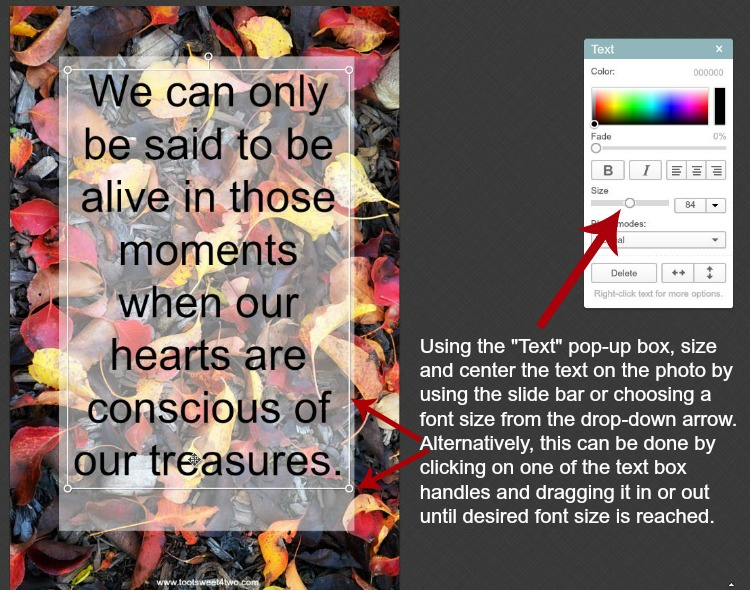 How to resize text on photos in PicMonkey instructions - 7