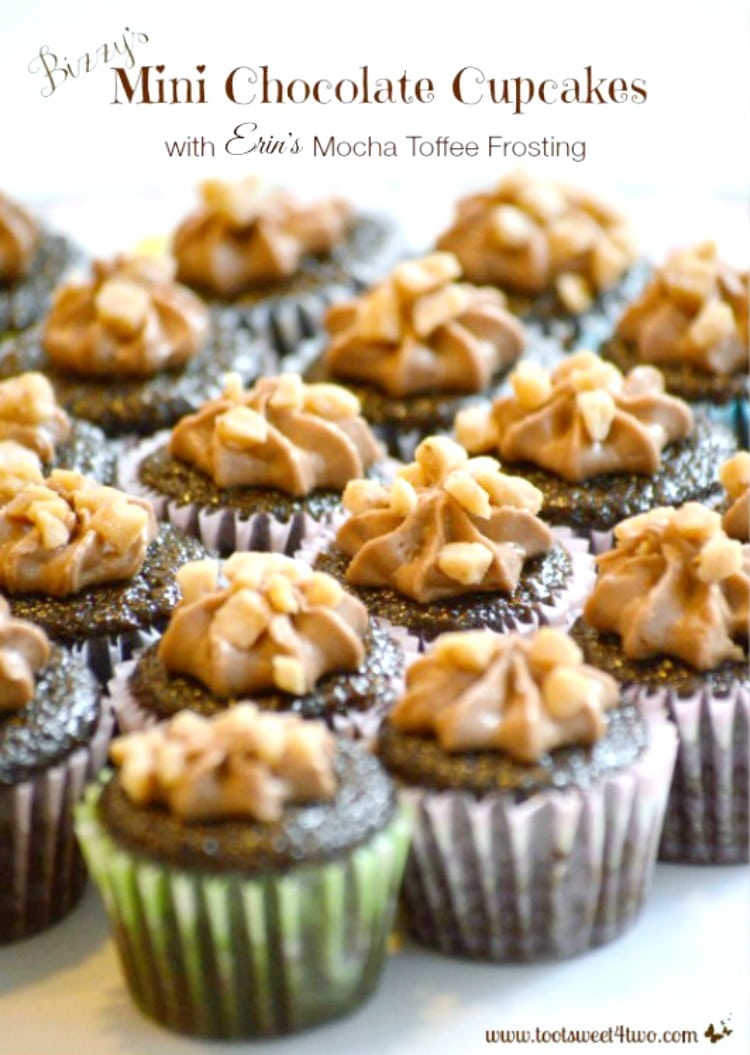 Thanksgiving Dessert - Bizzy's Mini Chocolate Cupcake with Erin's Mocha Toffee Frosting