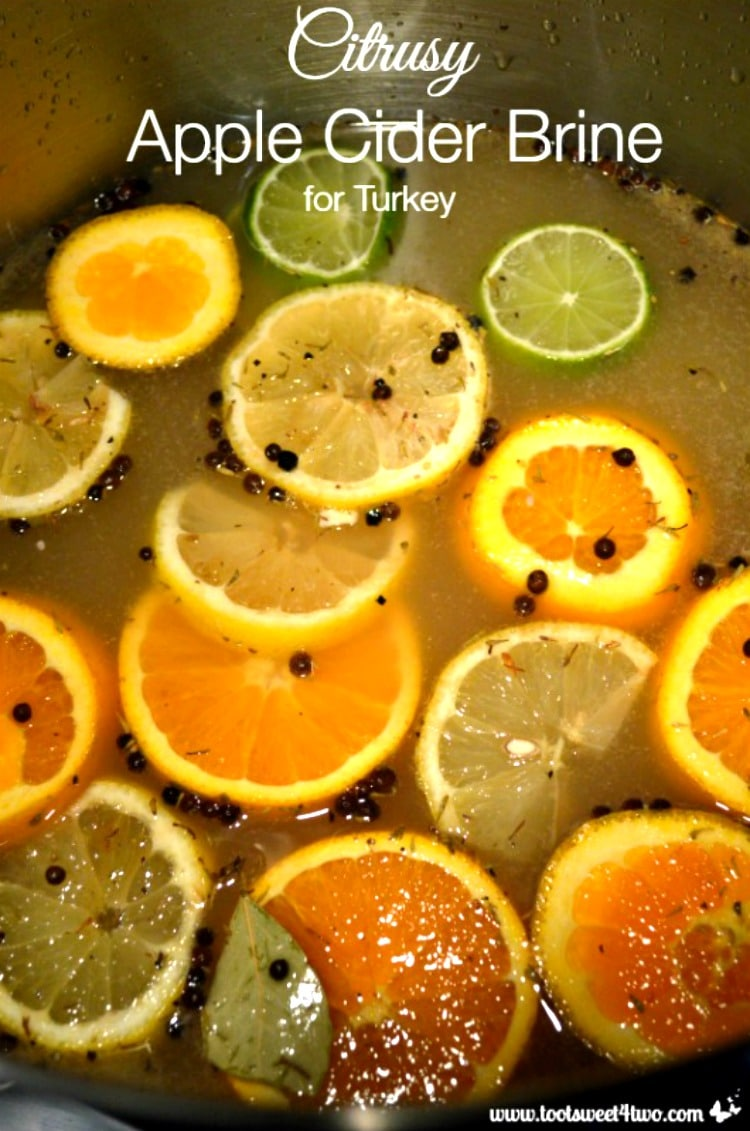 Thanksgiving Entree - Citrusy Apple Cider Brine for Turkey