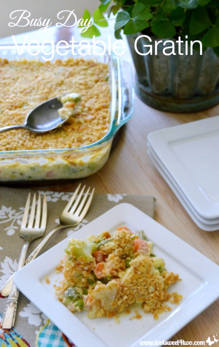 Thanksgiving Side Dish - Busy Day Vegetable Gratin