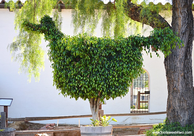 Dodo Bird Topiary at Mission San Diego de Alcala