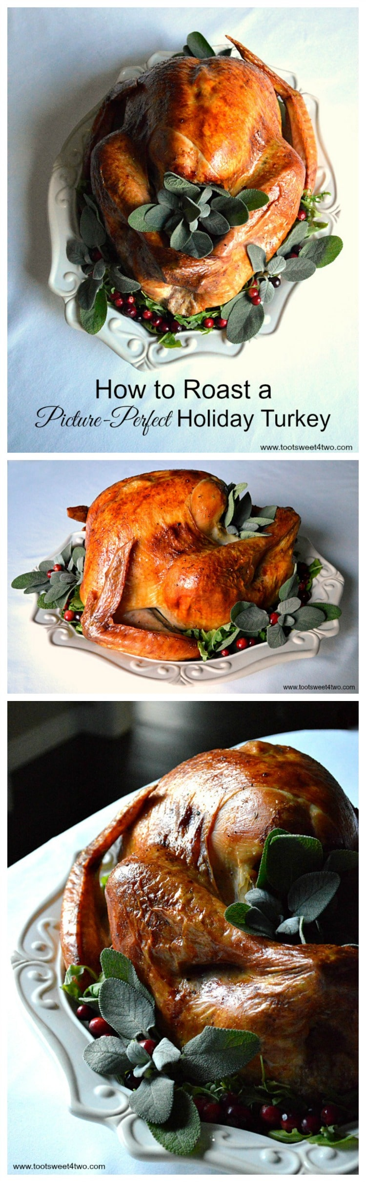 Picture-Perfect Holiday Turkey collage