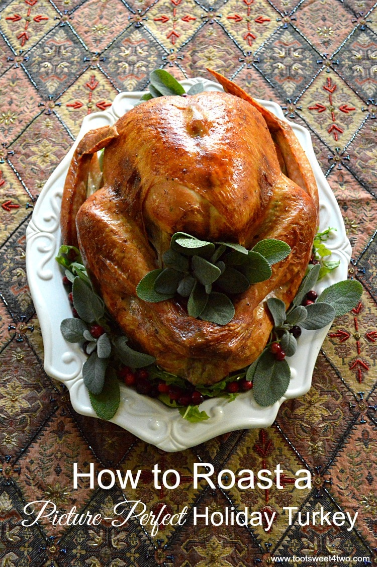 Picture-Perfect Holiday Turkey pic 2