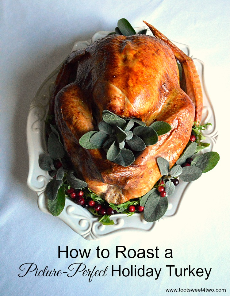 Picture-Perfect Holiday Turkey - fit for a family feast