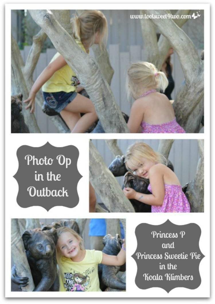 PicMonkey Basics - Create a Collage - The Princesses P at the Zoo