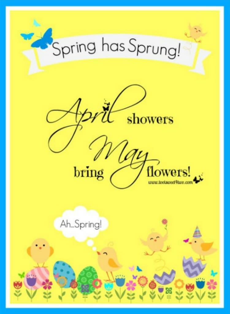 PicMonkey Basics - Design Your Own Spring has Sprung PicMonkey Tutorial
