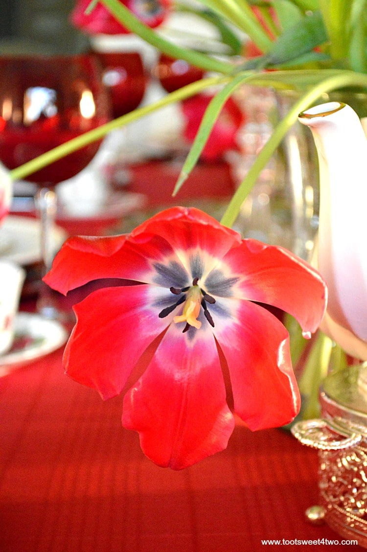 Red Tulip - Pic 1 - A Valentine's Day Tea Party Tablescape