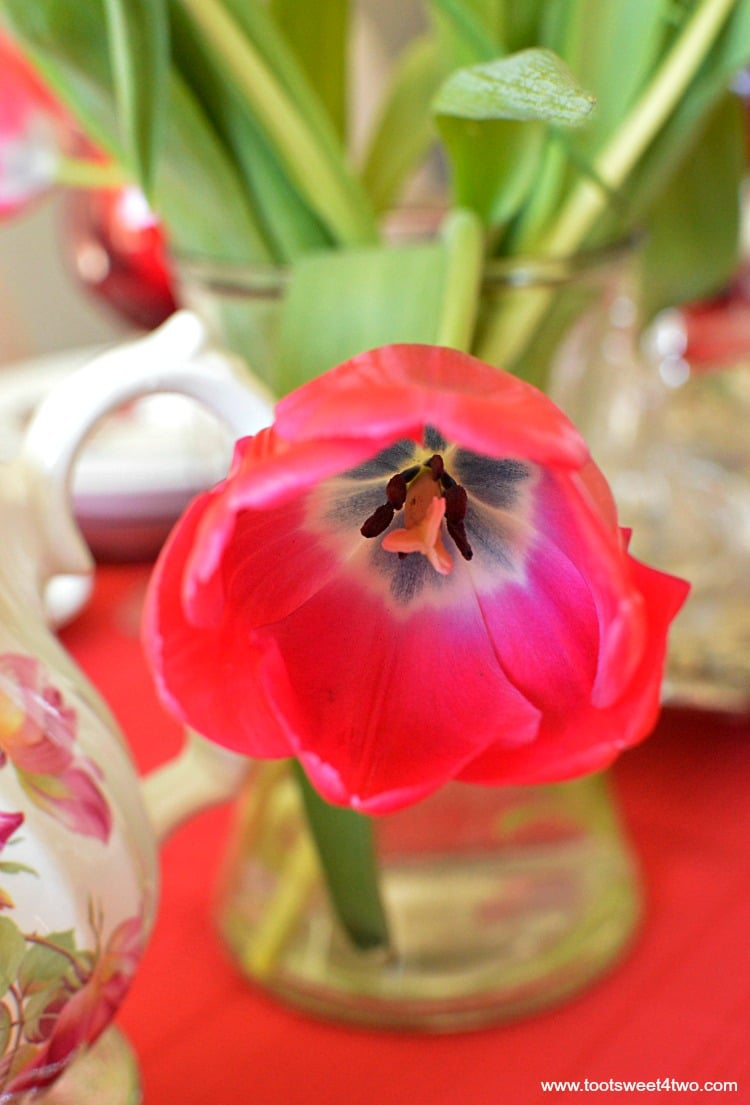 Red Tulip - Pic 7 - A Valentine's Day Tea Party Tablescape