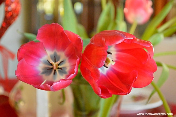 Red Tulips - Pic 2 - A Valentine's Day Tea Party Tablescape