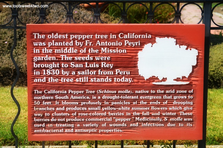 Signage for historic Pepper Tree at Welcome Center Old Mission San Luis Rey