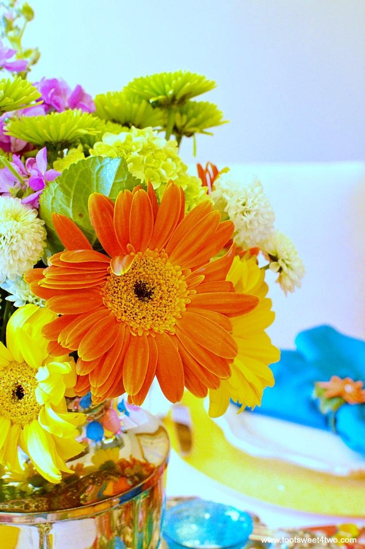 Orange Gerbera Daisy for Decorating the Table for a Cinco de Mayo Celebration