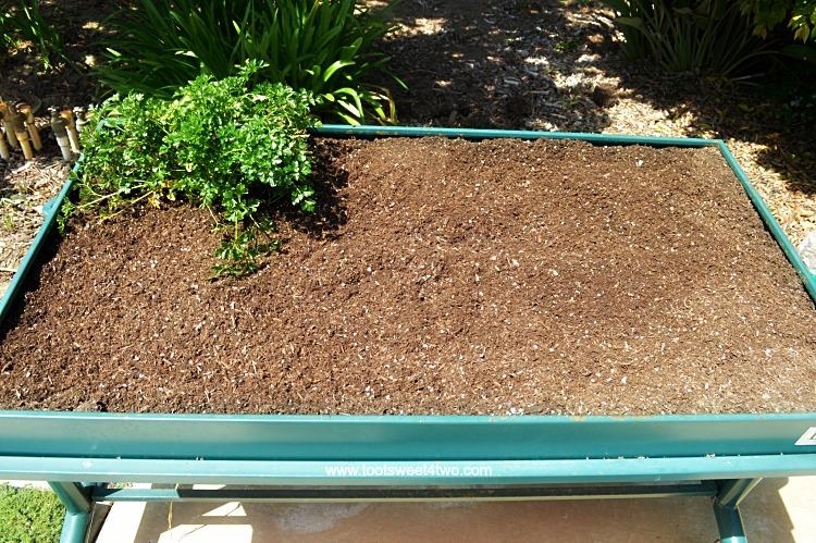 Potting Soil leveled in L Garden Elevated Rolling Trough Platter