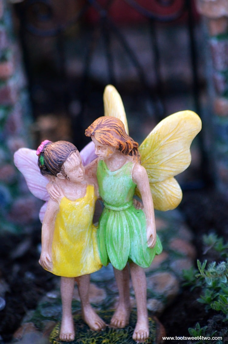 Have You Ever Wanted To Create Your Own Miniature Fairy Garden? A Magical,  Mystical