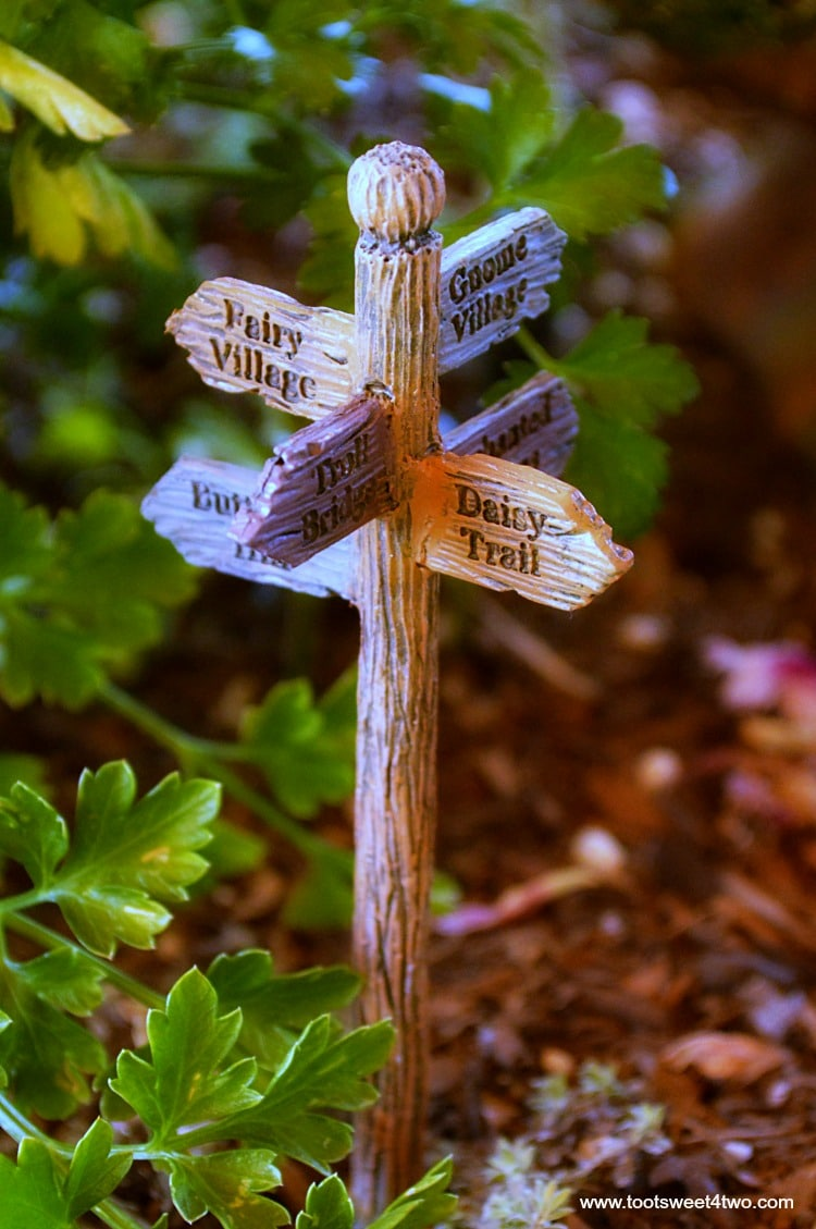 How to create a magical miniature fairy garden toot Small garden fairies
