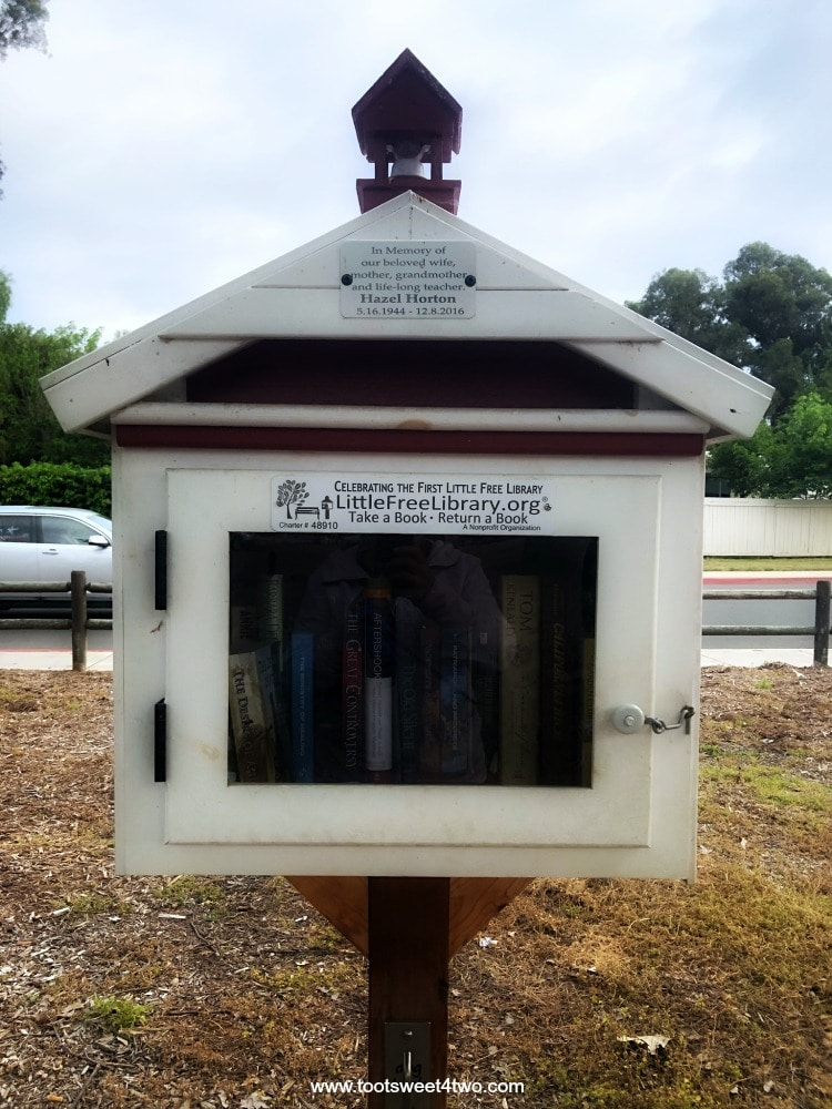 The Little Free Library kiosk